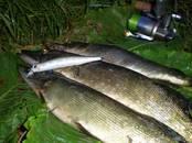 Medības, zveja,  Makšķeres un piederumi Mānekļi, ēsmas, cena 21 €, Foto