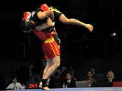 Sports, aktīvā atpūta Cīņas sports, Foto