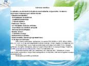 Kursi, izglītība,  Repetitora pakalpojumi Palīdzība studentiem, cena 10 €/st., Foto