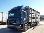 Kravu un pasažieru pārvadājumi Dzīvnieku transportēšana, cena 0.10 €, Foto