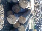 Дрова, брикеты, гранулы Дрова колотые, цена 26 €/м³ насыпной, Фото