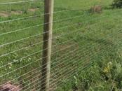 Lopkopība Medību saimniecība, savvaļas dzīvnieku audzēšana, cena 32.50 €, Foto