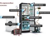 Бытовая техника,  Кухонная техника Холодильники, цена 5 €, Фото