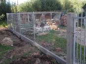 Стройматериалы Заборы, ограды, цена 14 €, Фото
