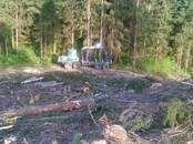 Лес,  Даугавпилс и р-он Калкунская вол., Фото