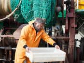Охота, рыбалка Одежда для охоты и рыбалки, цена 60 €, Фото