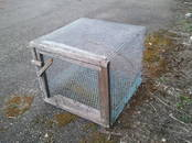 Putnkopība Aprīkojums putnu fermām, cena 5 €, Foto
