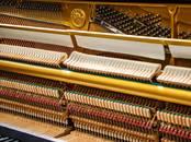 Mūzika,  Mūzikas instrumenti Taustiņu, cena 3 500 €, Foto