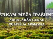 Mežs,  Cēsis un raj. Cēsis, Foto