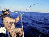 Охота, рыбалка,  Удочки и снасти Удочки, цена 49 €, Фото