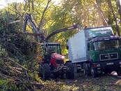 Saimniecības darbi Meža ciršana, cena 30 €, Foto