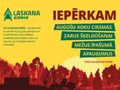 Mežs,  Ventspils un raj. Ventspils, cena 10 000 €, Foto