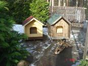 Dzīvnieki Dažādi, cena 150 €, Foto