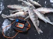 Medības, zveja Eholoti, cena 155 €, Foto