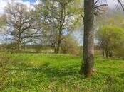 Lauku viensētas Cits, Foto