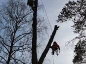 Хозяйственные работы Вырубка леса, цена 35 €, Фото