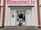 Sports, aktīvā atpūta Vindsērfings, cena 415 €, Foto
